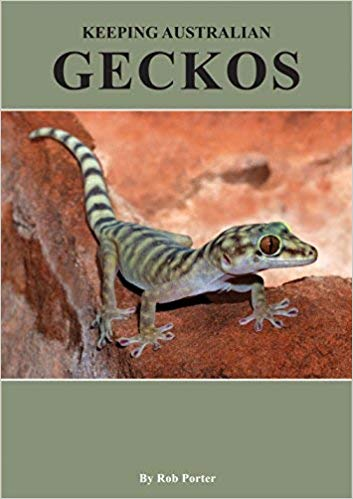Keeping Australian Geckos